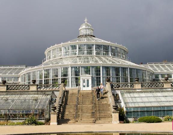 Het Palmhuis