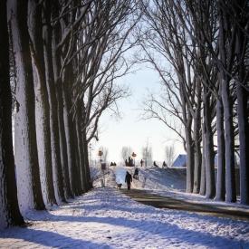 De Bildersteeg met sneeuw