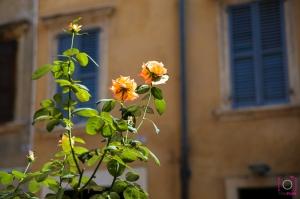 romantische stad Verona