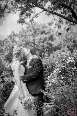 De kus tussen de bloemen