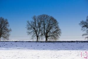 De dijk met sneeuw